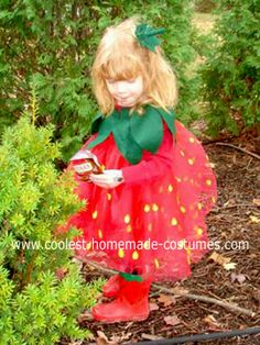 Homemade Wild Strawberry Costume: My daughter's boots were the inspiration for this homemade Wild Strawberry Halloween costume.  I then discovered that there were no Strawberry costumes
