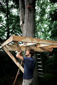 Tree House Plans - How to Build a Backyard Tree House - Popular Mechanics
