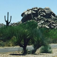 Road to #Carefree #Arizona #travel #landscapephoto #desert #cactus #saguaro