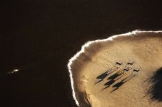 aerial Namib