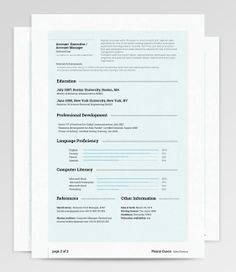 CvResume  Sales Manager  CVS Resume Jobs Etc