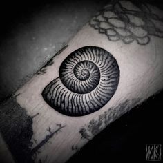 Snail Shell Tattoo by Noksi