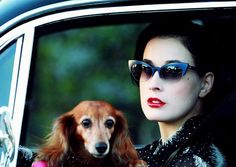 Dita's sunglasses are even cuter than her dog. And that's a cute dog.