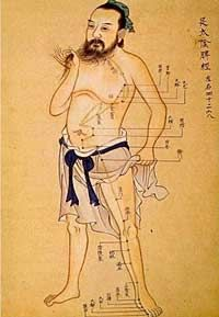 If you know much about Traditional Chinese Medicine (TCM), you probably know that acupuncture and TCM practitioners view your internal organs in a much different way than your science-based convent. Tai Chi, Qi Gong, Point Acupuncture, Body Clock, Shiatsu, Eastern Medicine, Craniosacral Therapy, Traditional Chinese Medicine, Fibromyalgia