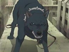 The Beautiful Anime Known As Wolfs Rain Well This Is Discussion For What Rai