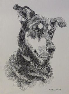 Animal Sketches, Animal Drawings, Art Drawings, Hatch Drawing, Hatch Art, Life Sketch, Scribble Art, Cross Hatching, Dogs