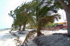 Beach, Spiaggia - Xcalak - Mexico, Messico