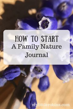 family nature journal