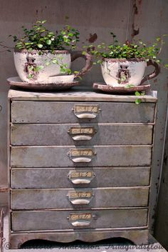 old chest for garden tools