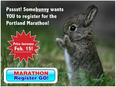 Register now before the price goes up! Somebunny wants you to run Portland!