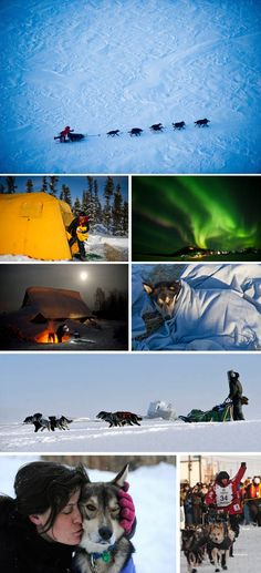 """Iditarod - """"The Last Great Race"""". Beautiful photos by Marc Lester, Anchorage Daily News."""