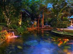Luxury real estate in Miami FL US - 4800 Pine Drive -