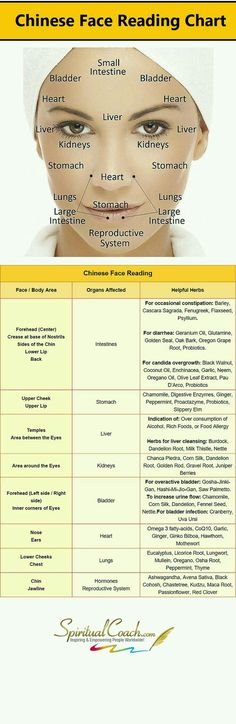 Chinese Facial Reading Chart - Learn whats going on inside your body by reading your face: http:chinese-face-reading Natural Cures, Natural Healing, Natural Face, Chinese Face Reading, Reading Charts, Salud Natural, Massage Therapy, Natural Medicine, Health Remedies