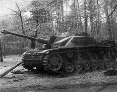 """Sturmgeschütz 7,5 cm Stu.K. 40 (L/48) Ausf. G (Sd.Kfz. 142/1) """"Tigerhai""""  Un StuG 40 surnommé « Tigerhai » (requin-tigre en allemand), probablement assemblé par la firme MIAG, capturé par des éléments de la 238ème brigade d'obusiers d'artillerie après les combats du 4-6 novembre 1943.   L'engin ainsi que de nombreuses pièces d'artilleries et obusiers lourds et leurs tracteurs ont été capturés au nord-ouest de Kiev, non loin du village de Pushcha-Voditsa, region fortement boisée. Nous devons…"""