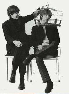 Paul McCartney and George Harrison Beatles Funny, Les Beatles, Beatles Love, Beatles Photos, Beatles Band, Paul Mccartney, Yoko Ono, Abbey Road, George Harrison