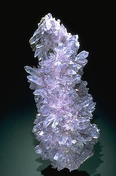 Creedite