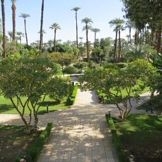 The Winter Palace Hotel in Luxor. Beautiful gardens.