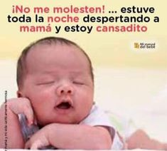 Jajaja molestando a la gente 😂😂😂😂 Funny Phrases, Love Phrases, Funny Baby Memes, Funny Babies, Hello In Spanish, Baby Messages, Baby Girl Quotes, Spanish Memes, Life Quotes To Live By