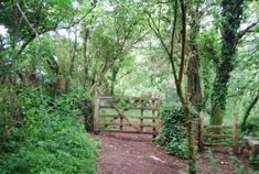 Image result for dart valley devon