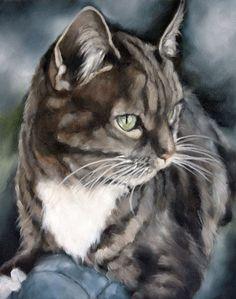 Ritratto personalizzato, ritratto animale, gatto pittura, pittura a olio, arte, animale arte, pittura dell