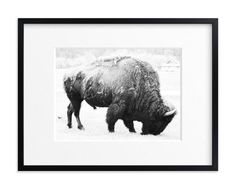 """""""Living Remnants of the Not-So-Distant Past"""" - Art Print by Shannon Dunlap in beautiful frame options and a variety of sizes."""