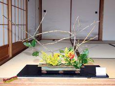 Essence Zen 2007 Ikebana Exhibition - Yolande TOUCHETTE - KORYU SHOTOKAI C20070429 031 by fotoproze, via Flickr