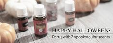 Happy Halloween: Party with 7 spooktacular scents Happy Halloween, Halloween Party, Essential Oil Diffuser Blends, The Make, Home Fragrances, Young Living Essential Oils, Spice Things Up, Peppermint, Autumnal