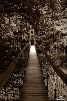 Suspension Bridge in Red River Gorge.   Visit me at:  https://www.Gregbetsworthphotography.com  https://www.facebook.com/gregbetsworthphotography  https://www.Instagram.com\GregBetsworthPhotography  Any of my prints can be ordered. Message me today for autographed pricing! Autographed 8x10 is just $25!  Book me now to get your own professionally captured moments!