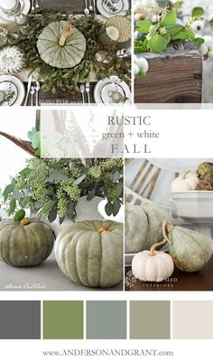 Check out this inspirational mood board featuring all the rustic green and white decorating ideas that you need to create a neutral fall color palette. White Pumpkins, Fall Pumpkins, Fall Home Decor, Autumn Home, Warm Autumn, Autumn Decorating, Decorating Ideas, Fall Color Palette, Arte Floral