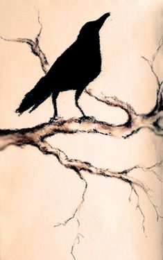 Gorgeously Simple.....Original Charcoal Drawing Raven on a Branch Dark by AbstractArtM