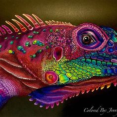Colored by @jennifershafferart Intricate Ink Animals in Detail by Tim Jeffs…