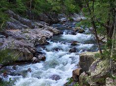 Laurel River