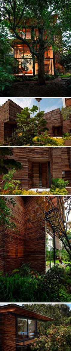 Maisons en bois dans la Valle de Bravo, Mexique