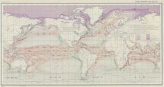 World - Ocean Currents and Sea Ice from Atlas of World Maps. United States Army Service Forces Manual M-101, 1943