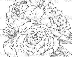 Digital Stamp - Instant Download - Peony - digistamp - Peony Bouquet - Floral Line Art for Cards Crafts by Mitzi Sato-Wiuff