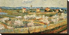 Vincent van Gogh Art Print at AllPosters.com