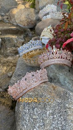 Pretty Quinceanera Dresses, Quinceanera Themes, Enchanted Forest Quinceanera Theme, Quince Themes, Quince Dresses, Sweet 16 Dresses, Tyler The Creator, Dream Dress, Book