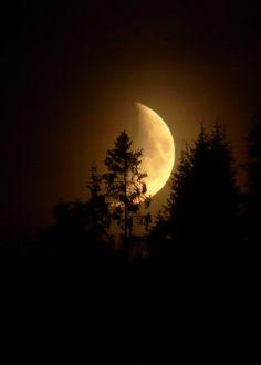 FANTASY Landscapes . Jyndari Nighttide moon