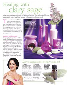 Young Living Essential Oils: Clary Sage by Sugarbean Clary Sage Essential Oil, Doterra Oils, Doterra Essential Oils, Essential Oil Blends, Young Living Oils, Young Living Essential Oils, Mind Body Spirit, Oil Benefits, Healing Herbs