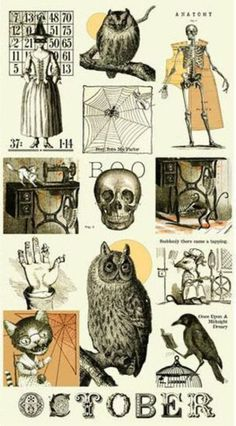 PANEL Sew Scary - Black Halloween Illustrations with Orange on CreamQ 23856-E