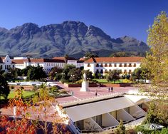 Stellenbosch University: Stellenbosch, South Africa My favorite place in the world. Wonderful Places, Beautiful Places, South Afrika, Tourist Office, Cape Town South Africa, Study Abroad, Scenery, Places To Visit, Around The Worlds