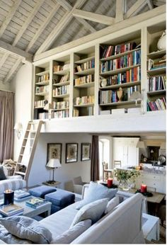 bookshelves and ladder