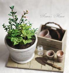 Nunu's House - Tanaka Tomo (handmade miniatures 1/12)