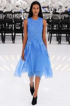 Christian Dior Fall 2014 Couture collection, runway looks, beauty, models, and reviews.