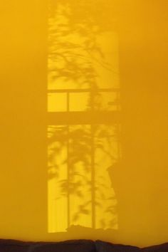 Yellow shadow Gelber Schatten von Franco Coluzzi The post Gelber Schatten & Shades of Yellow appeared first on Mustard yellow . Mellow Yellow, Mustard Yellow, Orange Yellow, Wallpaper Tumblrs, Picture Wall, Photo Wall, Yellow Theme, Aesthetic Colors, Aesthetic Yellow