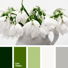 shades of green palettes with color ideas for decoration your house, wedding, hair or even nails. Silver Color Palette, Green Colour Palette, Green Colors, Pink Color, Gray Color, Color 2017, Pantone 2017 Colour, Color Blending, Color Mixing