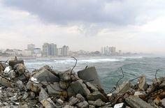US Expert: Hamas, not Israel, Killed Boys on Beach in Gaza War