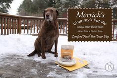 Grammy's Pot Pie-- Comfort Food For Your Dog