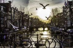 Amsterdam by David Bouchard on 500px