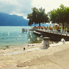 Vevey, Switzerland Vevey, Lugano, Lausanne, Switzerland, The Good Place, Dolores Park, Scenery, Nice, Spring